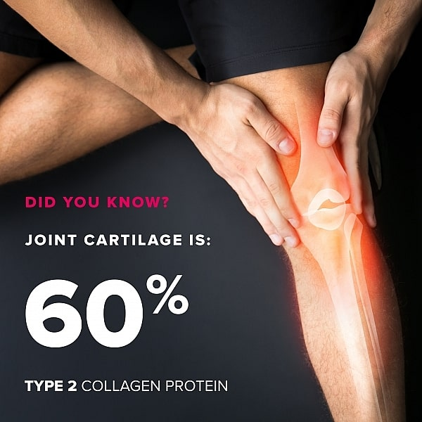 Collagen Type 2 Triple-Action Joint Complex